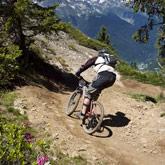 Scoprite la mountain bike, in gruppo o in famiglia, durante una gita di esplorazione o per una pratica più intensa, come la discesa o l'enduro. Appuntamento per gli adepti con le corse del Raid Vauban, dell'Enduro de la Forêt Blanche o l'Alps Epic!